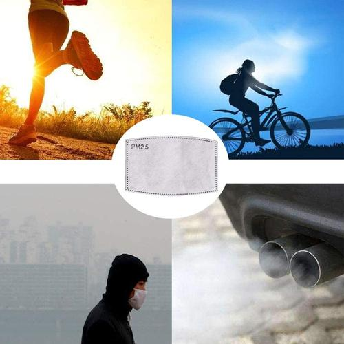 PM2.5 Replacement Filters for Face Masks - 10 Pack