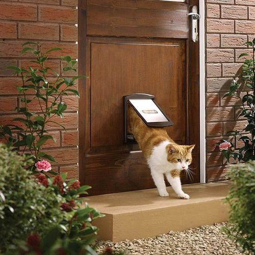 PetSafe Staywell Original 2 Way Pet Door (Large) - Brown